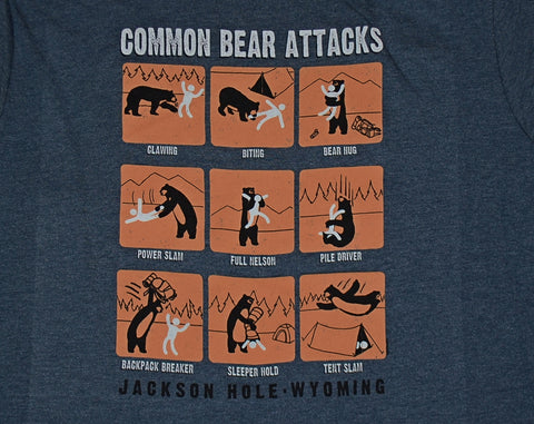 Common Bear Attacks