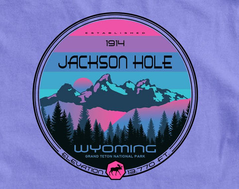 Long-Sleeve Disunion Tetons
