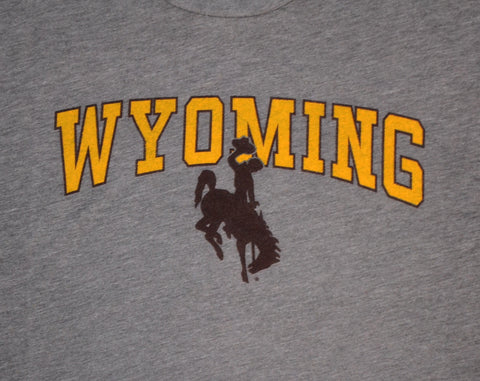 Wyoming Arch Bronco