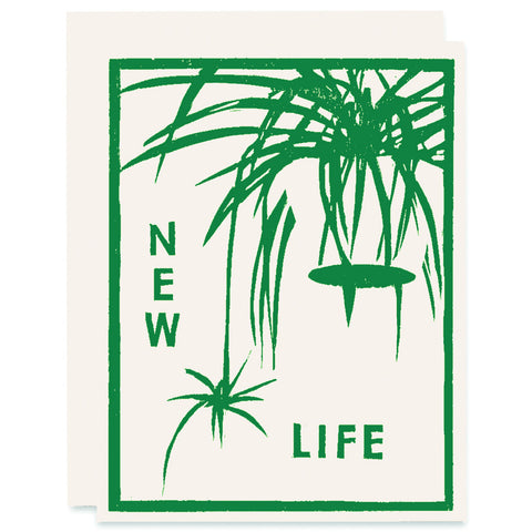 New Life (Spider Baby) </h6>Letterpress Card