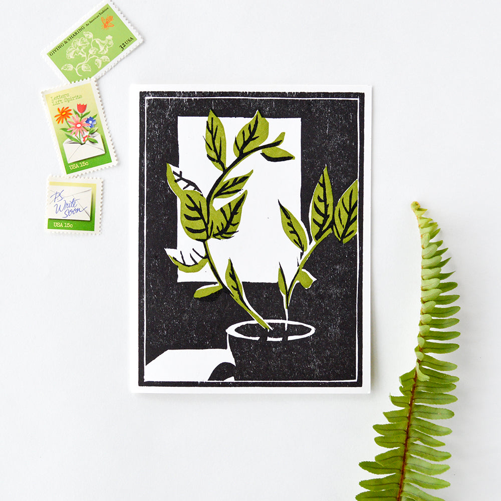 Plant by the Window Letterpress Card
