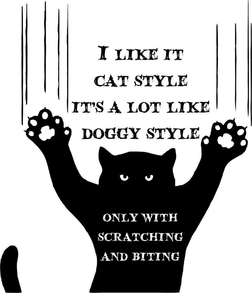 "I Like It Cat Style - It's a Lot Like Doggy Style But with Scratching & Biting - 23"" Die Cut Vinyl Wall Decal Sticker"