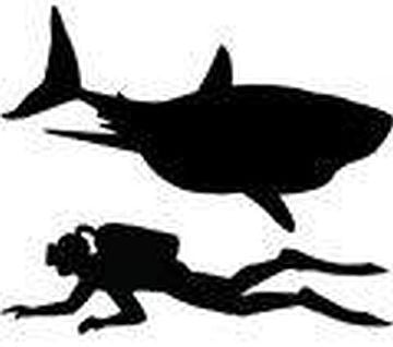 Diver And Shark | Die Cut Vinyl Sticker Decal | Sticky Addiction