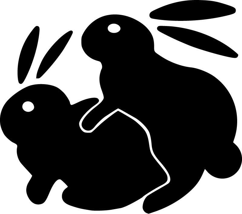 Humping Bunnies JDM Racing | Die Cut Vinyl Sticker Decal | Sticky Addiction