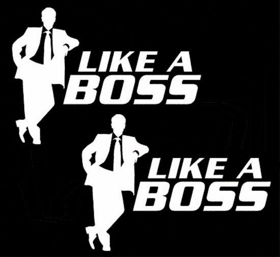 Like A Boss JDM Lot x 2 | Die Cut Vinyl Sticker Decal | Sticky Addiction