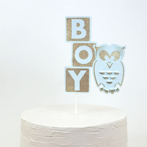 Boy cake topper with owl