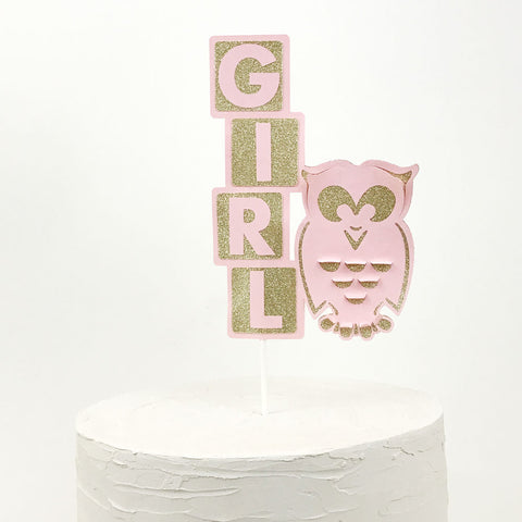 Girl cake topper with owl