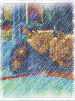 Load image into Gallery viewer, Street Scene West End Woven Blanket