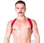 The Prowler Red - Sports Harness Lite
