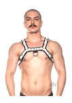 The Prowler Red- Bull Harness