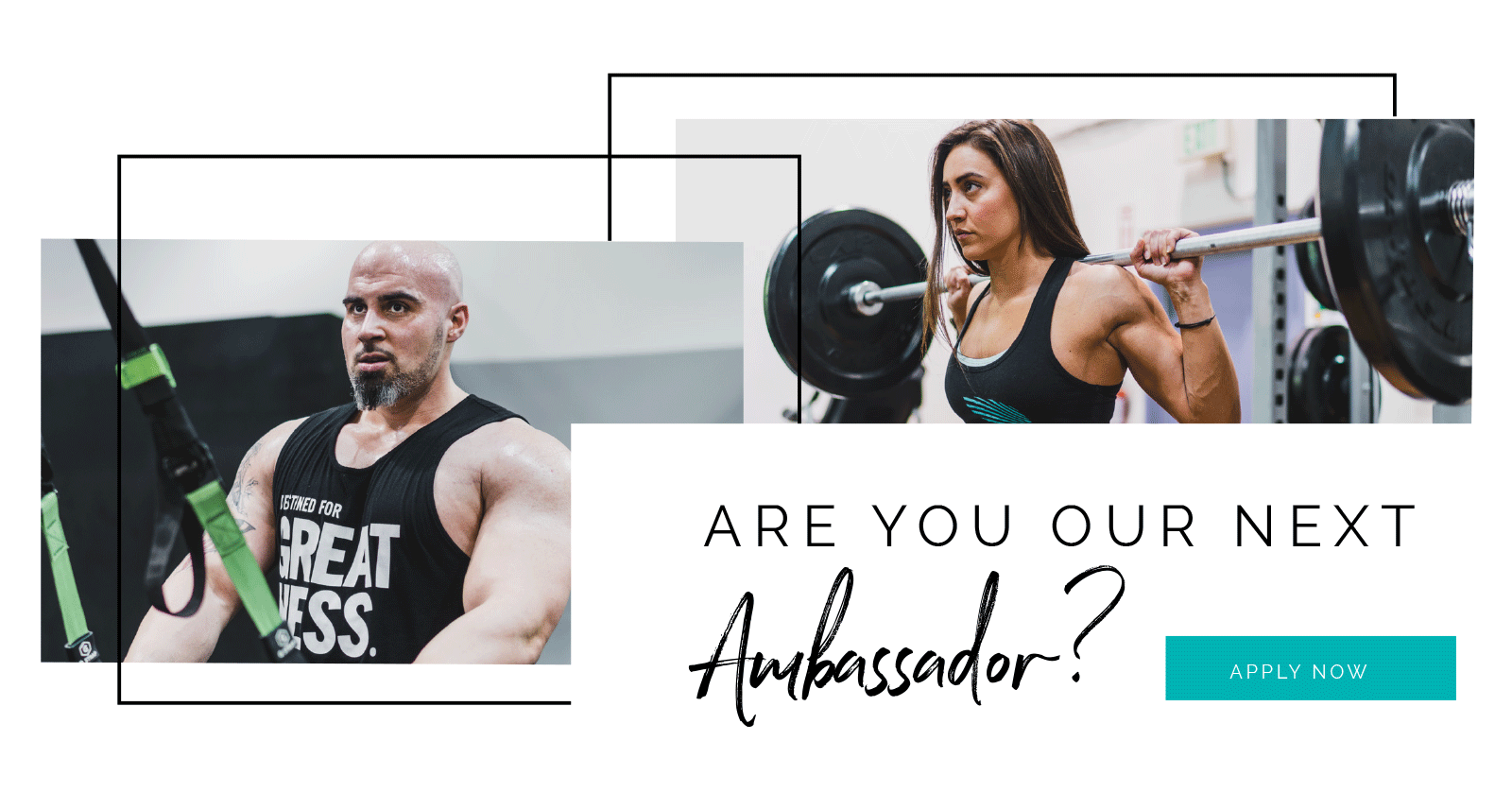 Ambassador Search - Apply Now