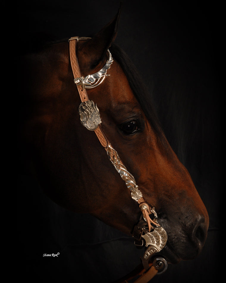 Headstall Silver