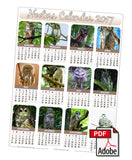 2017 Hooters Owl Calendar - North America (3 options)