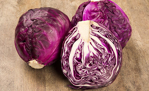 Cabbage - Mammoth Red Rock