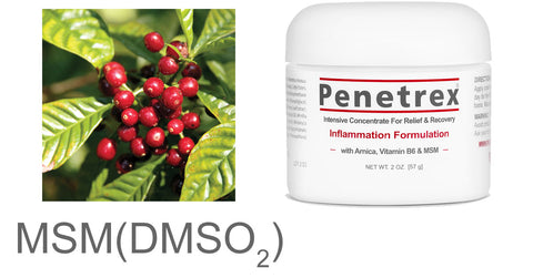 MSM DMSO2 cream penetrex
