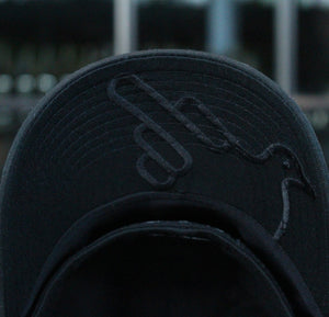 The James Fitted Graphic Hat