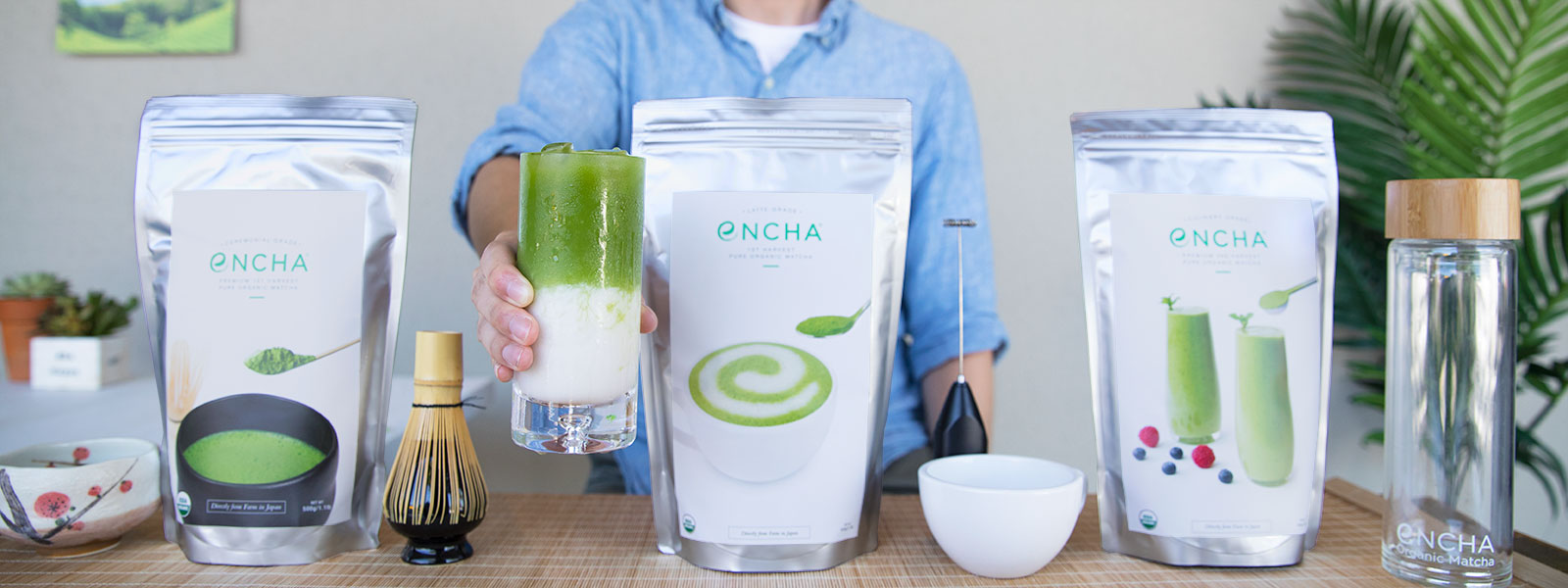Matcha wholesale bulk from Encha Organic Matcha