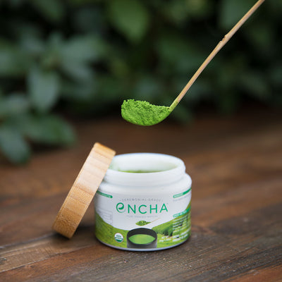 organic matcha powder from matcha jar on bamboo scoop chashaku