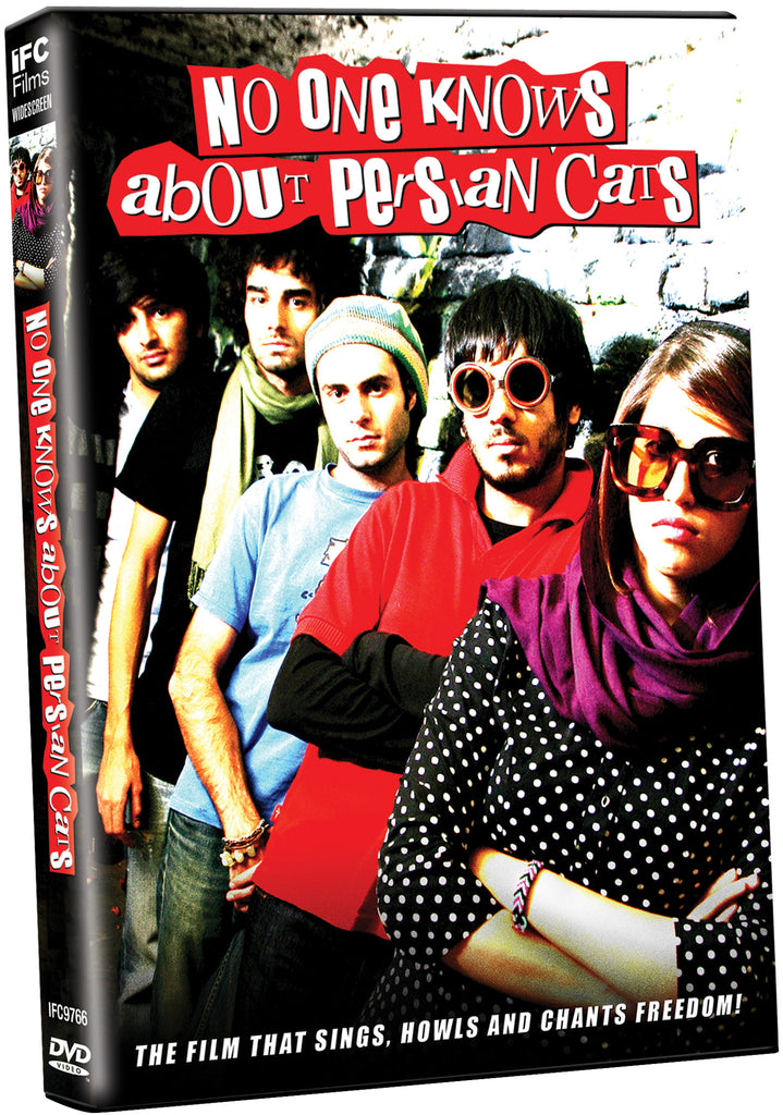 No One Knows About Persian Cats - Box Art