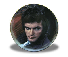 Dark Shadows Collectors Plate Quentin - Box Art