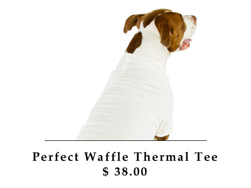 Perfect Waffle Thermal Tee