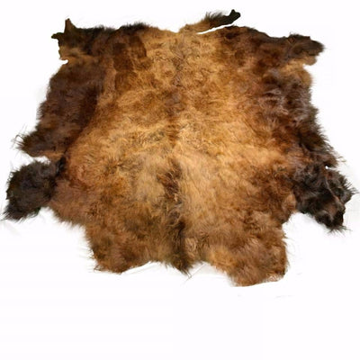 Bison (Buffalo) Hide / Robes