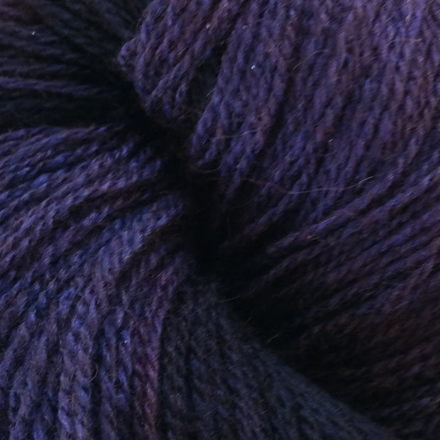 Raven - Purple with deep dark purple tones
