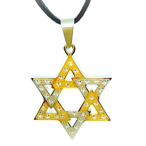 feshionn-iobi-two-tone-cz-star-of-david-stainless-steel-necklace