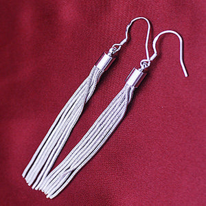 Sleek Silver Strings Tassel Earrings
