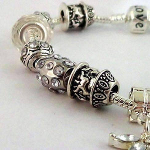 Feshionn IOBI bracelets Crystal Dragonfly with Multifaceted Beads European Style 925 Silver Charm Bracelet