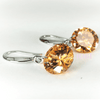 Image of Feshionn IOBI Earrings Citrine / 10mm Naked IOBI Crystals Drill Earrings - The Exotic Collection by Feshionn IOBI