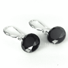 Image of Feshionn IOBI Earrings Hematite Black / 10mm Naked IOBI Crystals Drill Earrings - The Exotic Collection by Feshionn IOBI