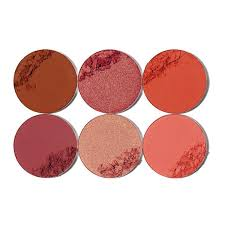 THE SAHARAN BLUSH PALETTE VOL.II