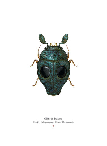 Richard Wilkinson - Glaucus Trahaxo (Greedo)