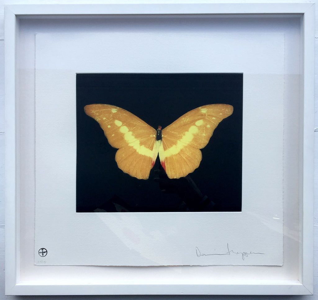 Damien Hirst - To Lure - Signed and Framed Butterfly Etching