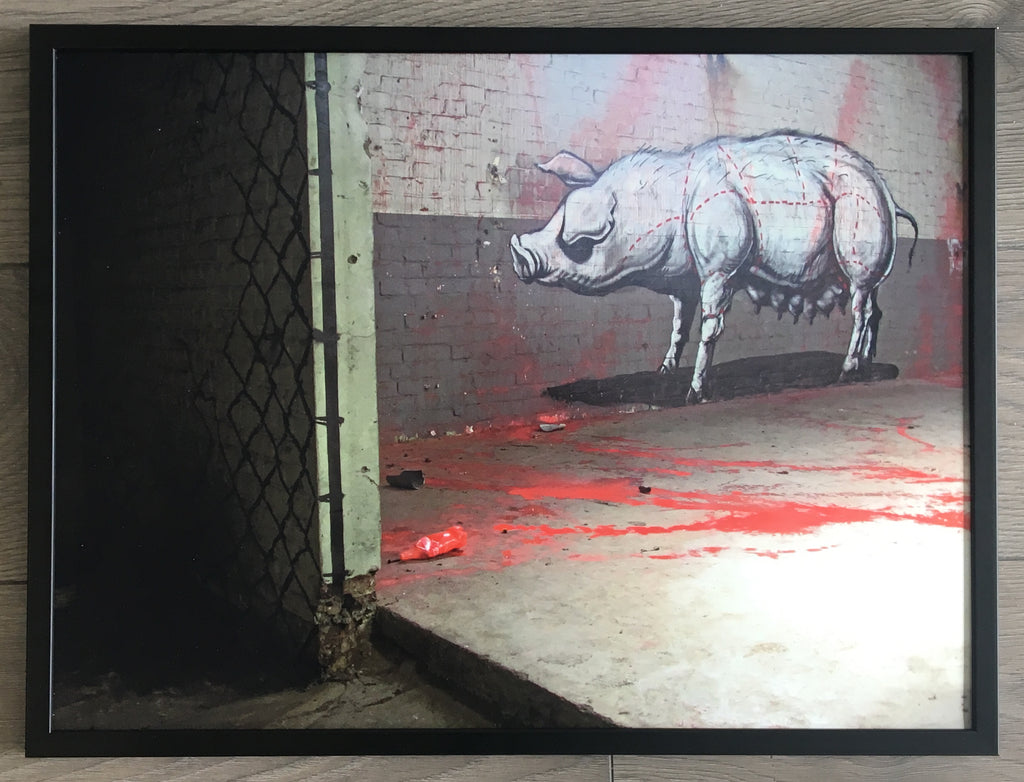 ROA - Pig (Signed Diabond Photo Print)