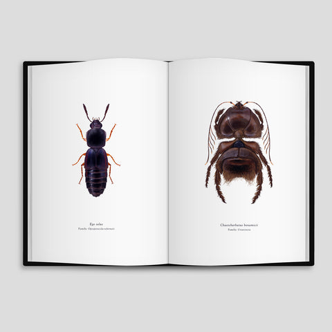 Richard Wilkinson - Arthropoda iconicus Volume I - Star Wars Insect Book