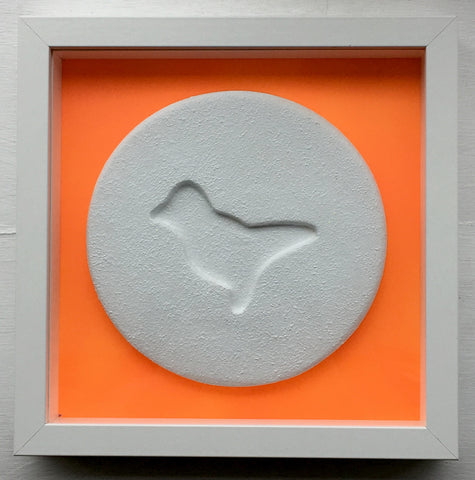 Zeus - Fluoro Orange Dove - Ecstasy Art Pill