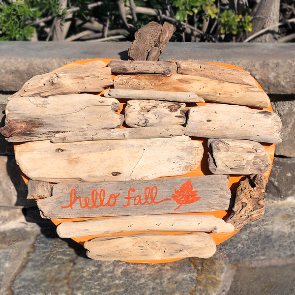 Driftwood Pumpkin Decor