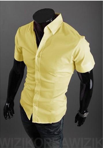Short Sleeve Solid Business Men Shirt - TrendSettingFashions   - 6