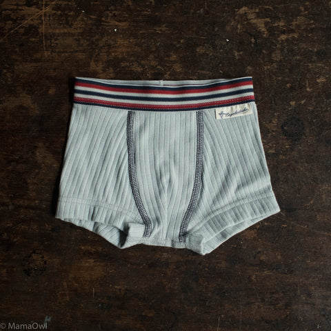 Organic Cotton Underwear - Boys Pants - Silver