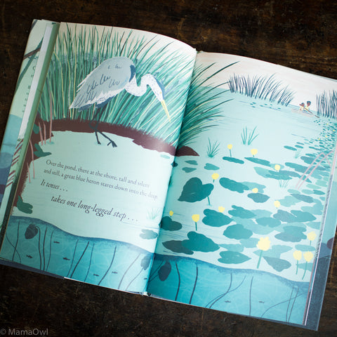 Kate Messner - Over And Under The Pond