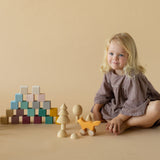 Wooden 20 Piece Cube Set - Forest