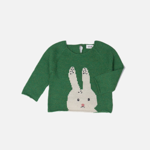 Alpaca Bunny Sweater- Fern/Multi - 12m-18m