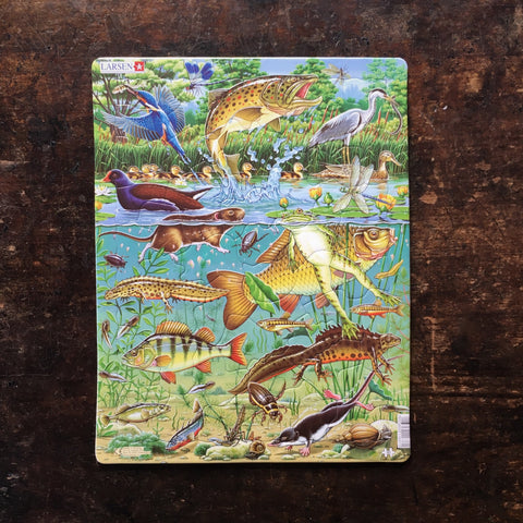 Thick Cardboard Puzzle 50 pieces - Pond Wildlife