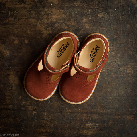 *COMING OCTOBER* Toddler T-Bar Shoes With Brogue Detailing - Rust Suede