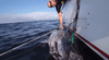 TORTURE TEST: BLUEFIN TUNA FISHING WITH A STELLA SPINNING REEL