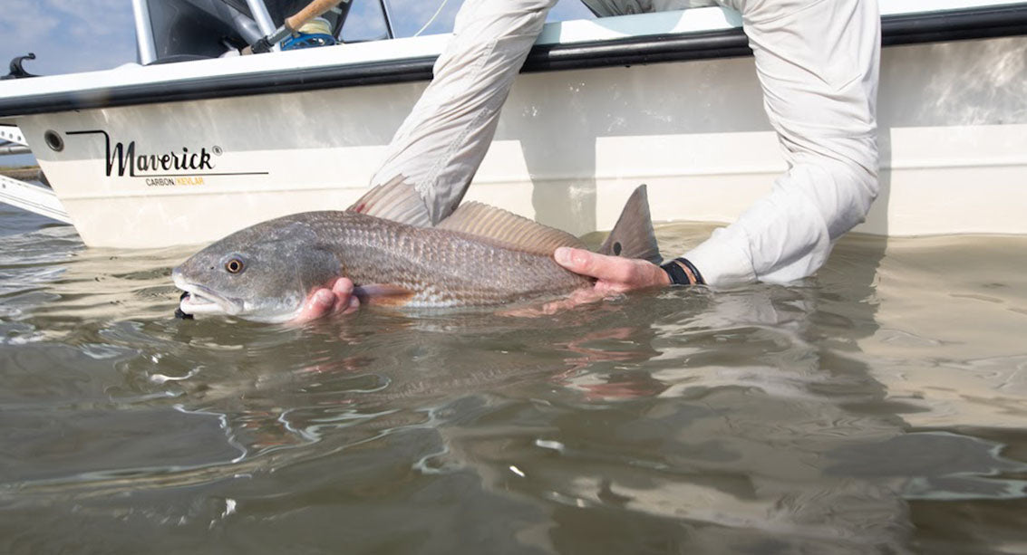 holding a Redfish