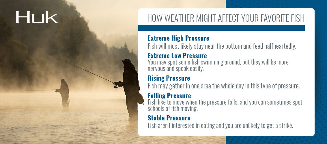 How weather might affect your favorite fish