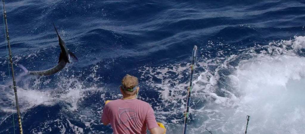 White marlin hook up